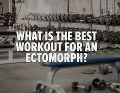 What Is The Best Workout For An Ectomorph? - Bodybuilding.com