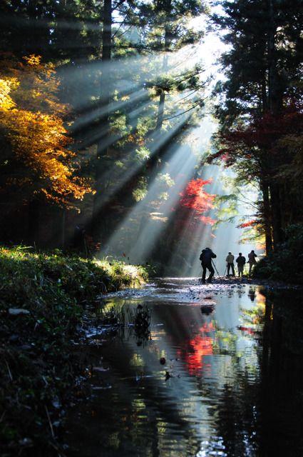 Shuchi, Shizuoka, Japan 静岡県 小國神社 周辺