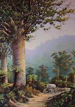Kauri Bushman by Jeanette Blackburn
