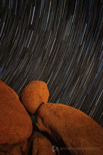 Star Trails at Joshua Tree National Park by Anne McKinnell.