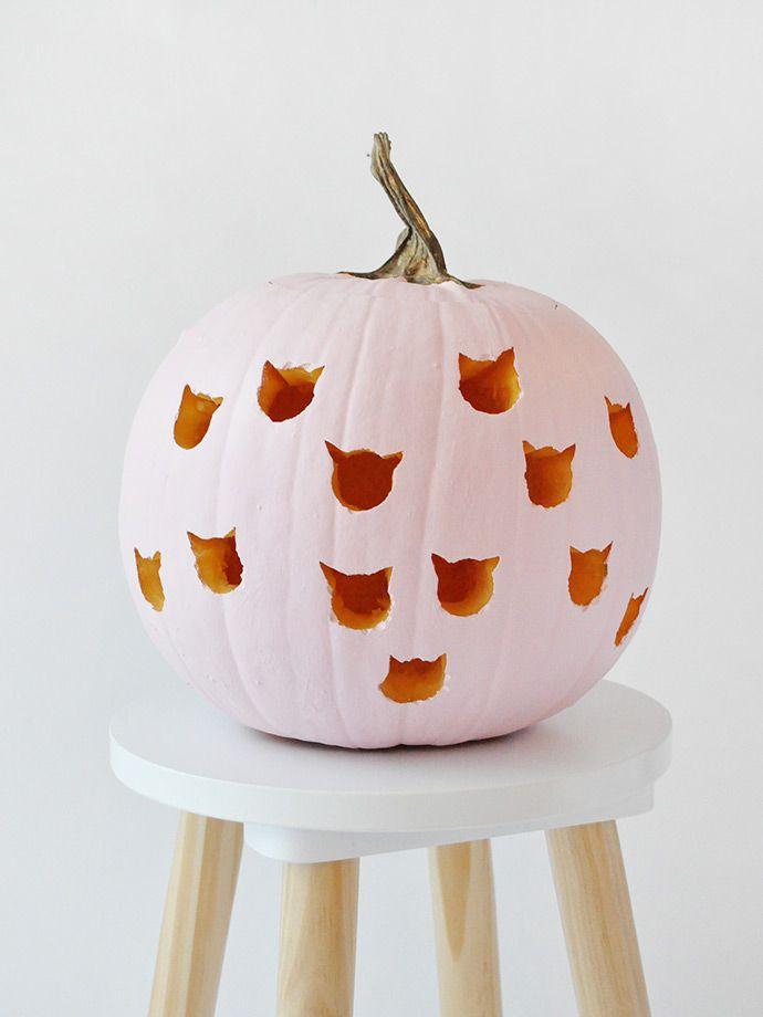 Diy cat drilled pumpkins halloween food crafts pumpkin