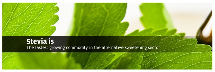 Stevia is the fastest growing commodity in the alternative sweetening sector.