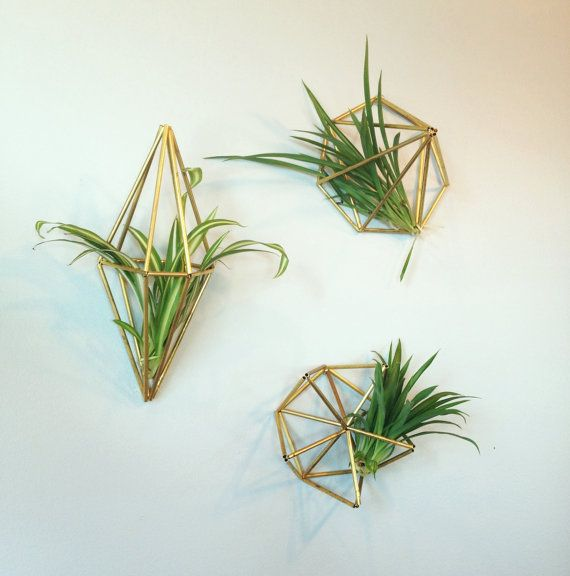 Set of 3 Geometric air plant wall hangers Brass by meginsherry