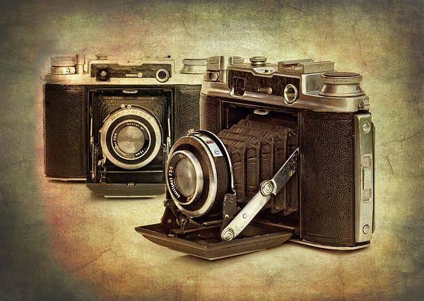 vintage cameras for sale | Vintage Cameras Photograph - Vintage Cameras Fine Art Print