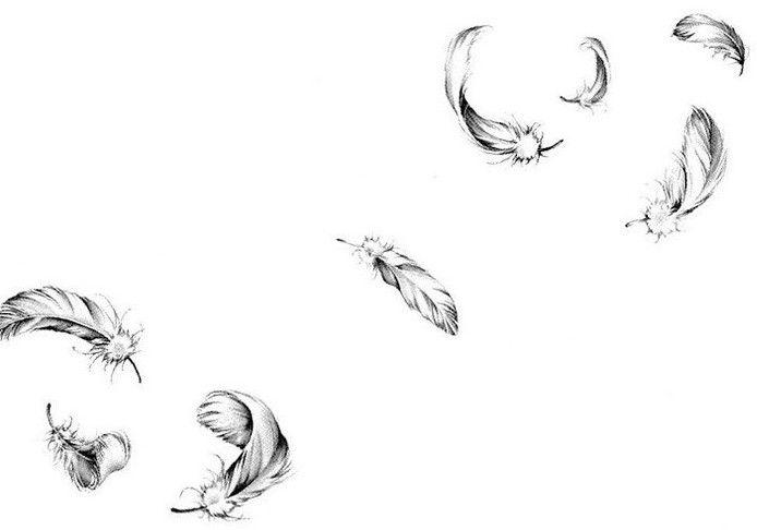 http://fc08.deviantart.net/fs49/f/2009/199/8/e/Trail_of_Feathers_by_Cori16.jpg