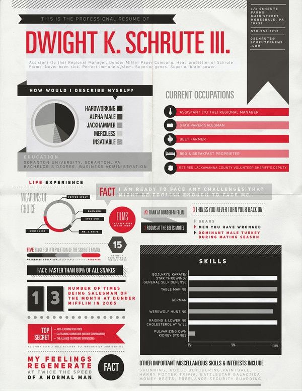 Dwight's infographic resume