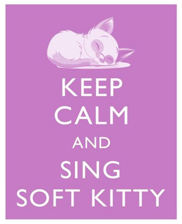 hmm, wonder if everyone knows the soft kitty song :)