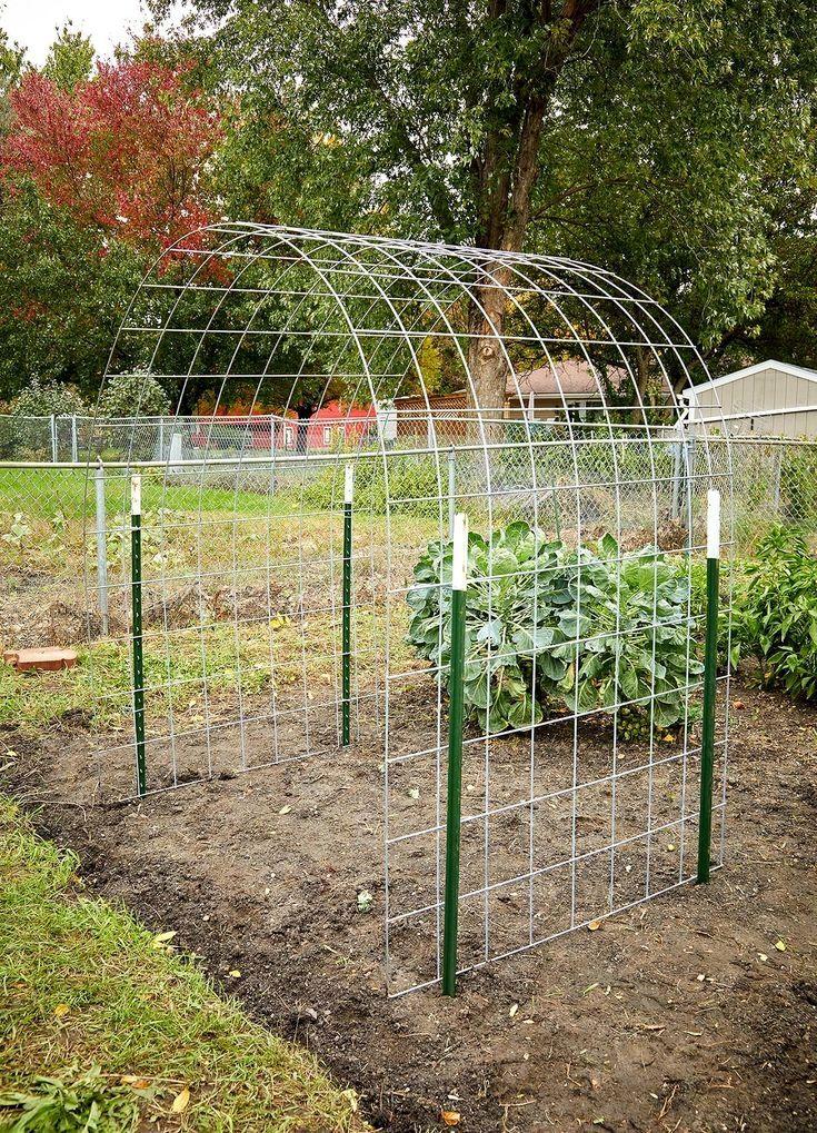 Free Trellis Plan In 2020 Vegetable Garden Trellis Bean Trellis Vegetable Garden Design
