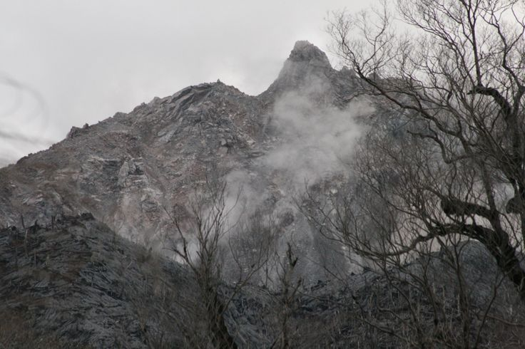 The steaming lava dome of Chaiten volcano, Chile, in 2009. The eruption in May 2008 laid waste to the temperate rain forest that cloaked the flanks of the volcano.