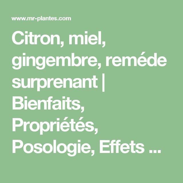 Citron, miel, gingembre, reméde surprenant | Bienfaits, Propriétés, Posologie, Effets Secondaires