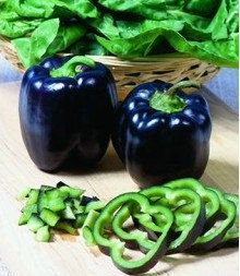 Organic Heirloom RARE 5 Black Deep Purple Pepper Seeds Bell Sweet Pepper F1 Vegetable Seeds Garden Seeds F66