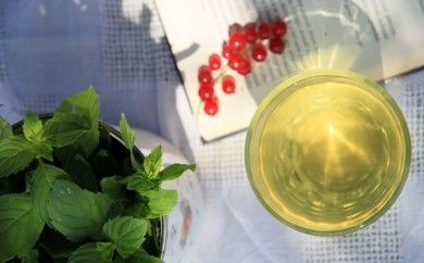 Letný čaj z mäty http://www.sikovnamamina.sk/zahradne-bylinky-letny-caj-z-maty/
