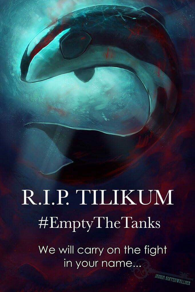 Poor Tilikum . He's finally free from 30 yrs of abuse. Shame on you SeaWorld.