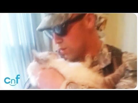 Soldier Welcomed Home by Excited Cat - YouTube. Very touching to see strong bond between cat and her human!!