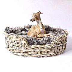 Nothing beats a classic rattan dog basket - softened up with a cosy blanket - in store now #dogs #dog #blankets #style #interiors #style #fluffy #cute #pets #love #dogbed