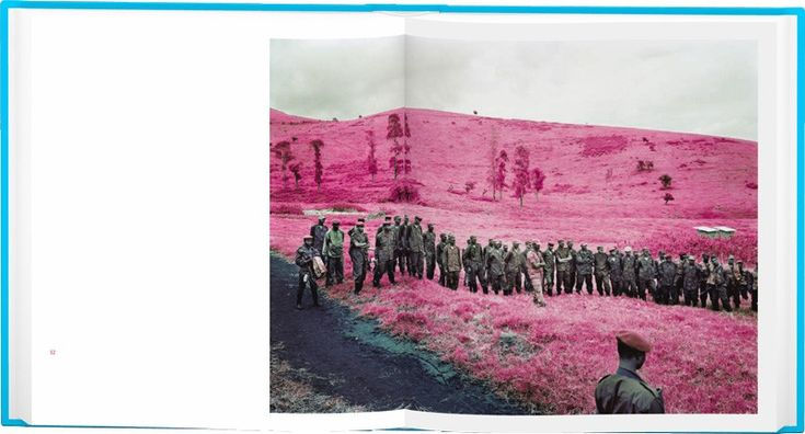 """""""Infra"""" by Richard Mosse"""