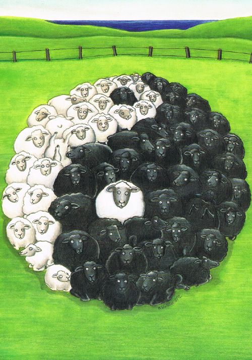 Axel Scheffler. Postcard - love the yin and yang sheep!
