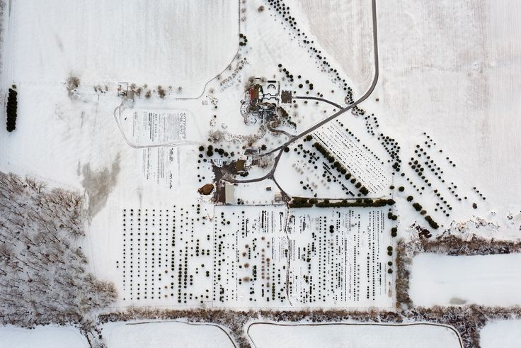 [ LIMITED EDITION, SIGNED LARGE FORMAT PRINT AVAILABLE HERE ]Central New Jersey is home to many tree farms and nurseries, randomly scattered around villages and small towns. I often drive past them on my way to the airport. However, only flying above them reveals the beauty of their often simple, organized design. (3534)