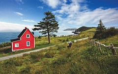 Red House in Tors Cove