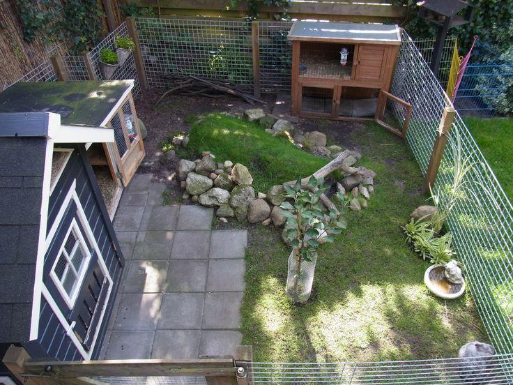 25 best ideas about rabbit playground on pinterest for Outdoor rabbit enclosure ideas