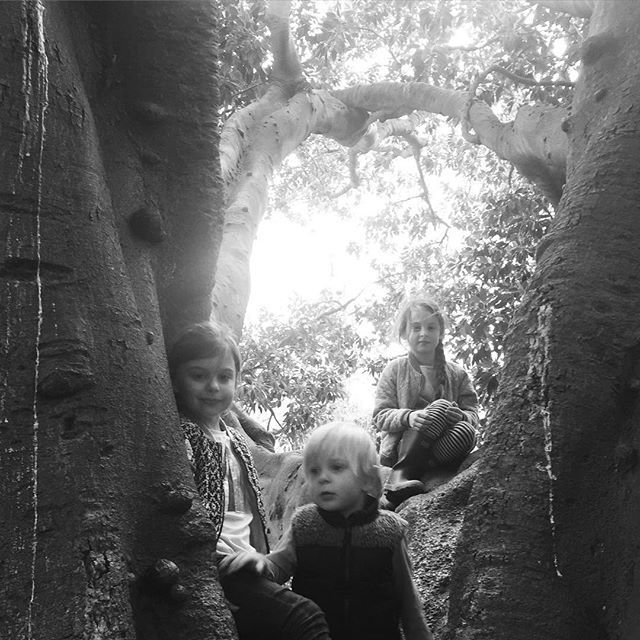 Had ourselves a nice little Sunday - Adventuring in trees 🌲  #lovemyfamily #blackandwhitephotography #nature_perfection #treehouse #perfectday