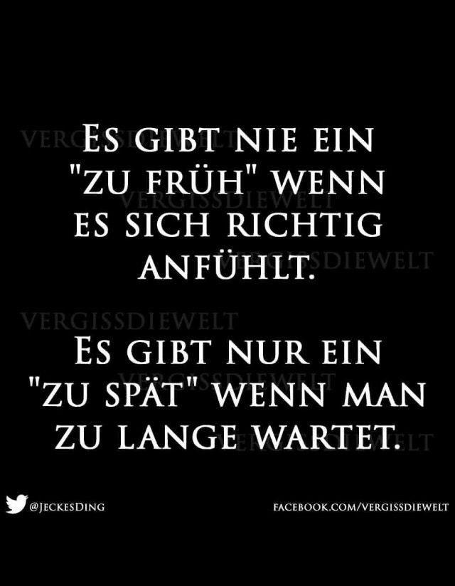 Pin Von Thomas Mann Auf Sprüche Sprüche Zitate Sprüche