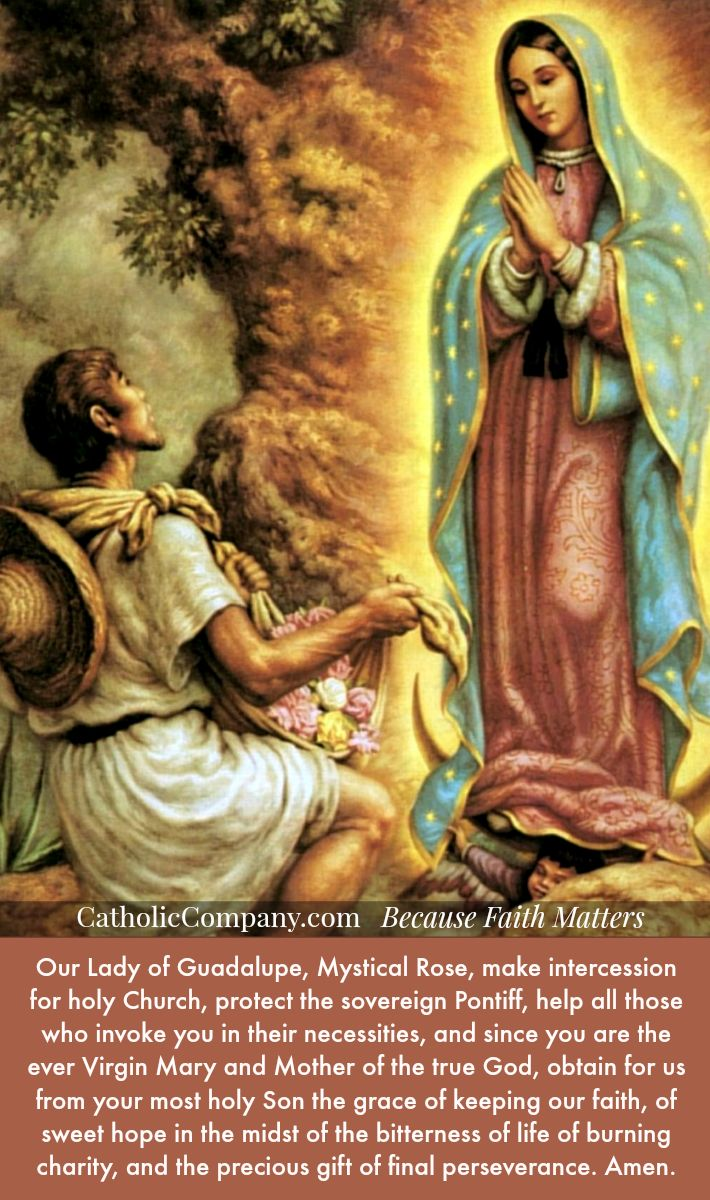 Blessed Mother Mary And Jesus Our Lady of Guadalupe ...