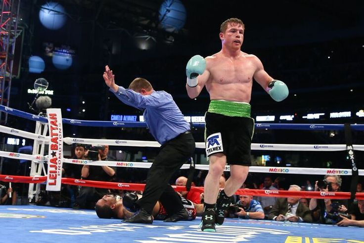 Canelo Álvarez will fight Julio Cesar Chavez Jr next