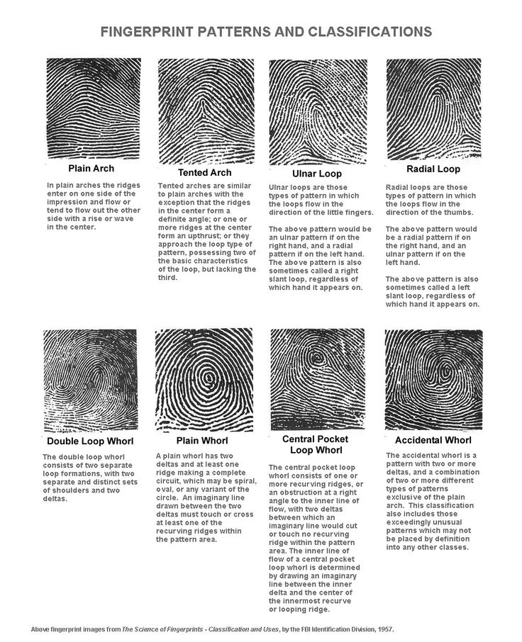 The F.B.I. Fingerprint Types vary significant among Ethnic Populations! | Palm Reading Perspectives