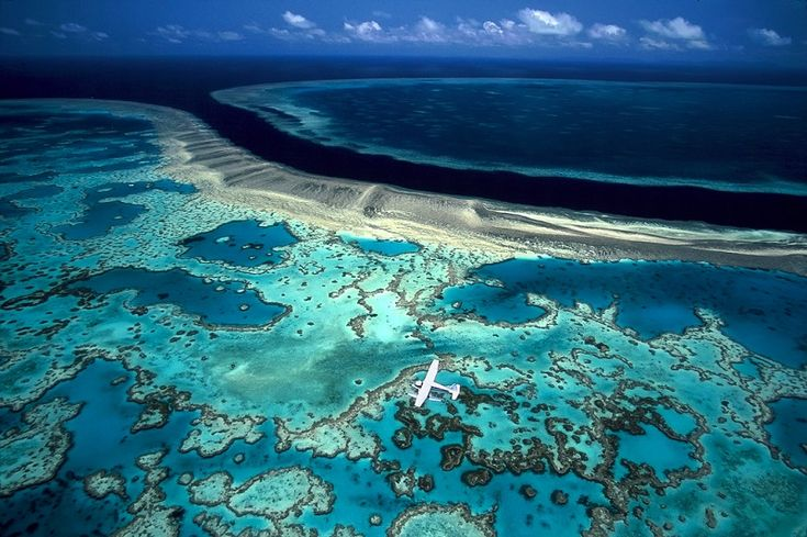 2-Большой Барьерный риф в Австралии.jpg (800×532)
