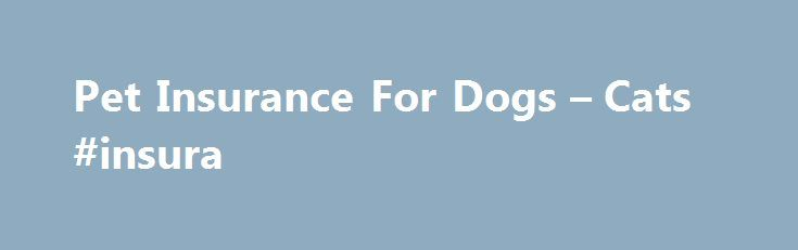 Pet Insurance For Dogs – Cats #insura http://north-dakota.remmont.com/pet-insurance-for-dogs-cats-insura/  # M S PET INSURANCE 35% multi-pet discount if you insure more than one pet Save 15% on new policies when you buy online (excludes renewals and amendments to existing policies) Protect your dog or cat from aged 8 weeks Access to vetfone a freephone 24 hour helpline 35% multi-pet discount is available for second and subsequent pets in the first policy year only. Terms and conditions…