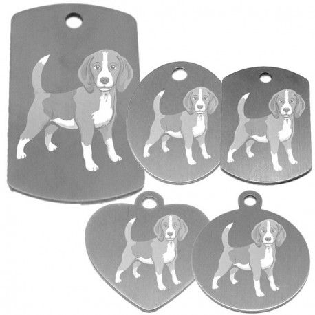 Collier electrique pour chien beagle