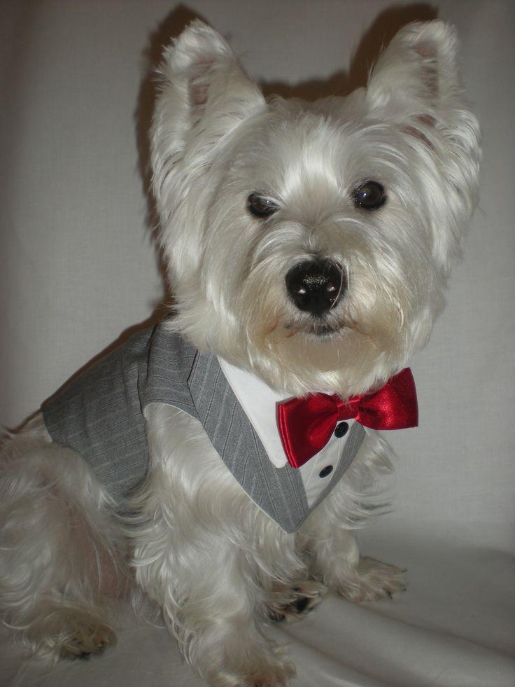 Red Bow tie Tuxedo set