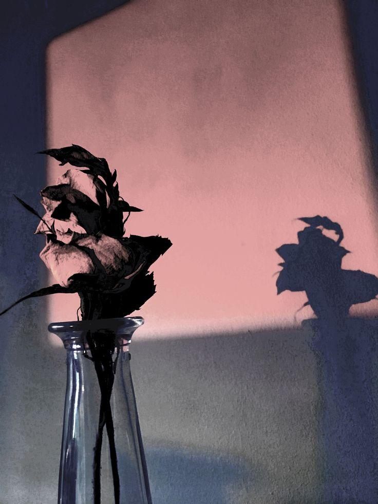 Roses photoshop #6