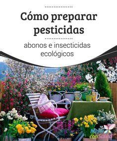 Cómo preparar pesticidas, abonos e insecticidas ecológicos  Además de no ser perjudiciales para nuestra salud ni para el medio ambiente, al utilizar tanto abonos como insecticidas ecológicos nos aseguramos una cosecha sana y libre de químicos