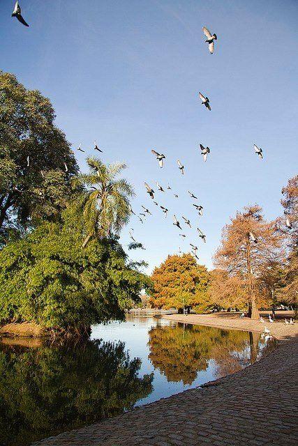 Lagos de Palermo - El parque mas grande de la ciudad de Buenos Aires, Argentina.