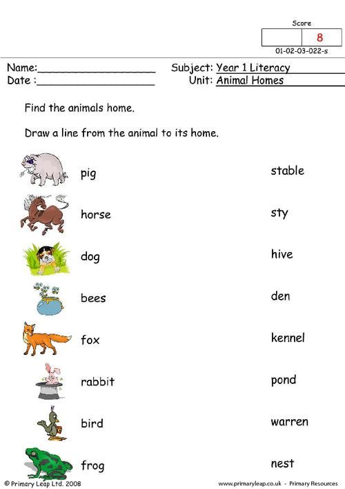 animals and their homes pictures worksheets stuff to buy pinterest home pictures and. Black Bedroom Furniture Sets. Home Design Ideas
