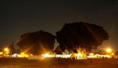 Legenda dan Mitos Beringin Kembar di Alun-alun Yogyakarta | Travel Jaya