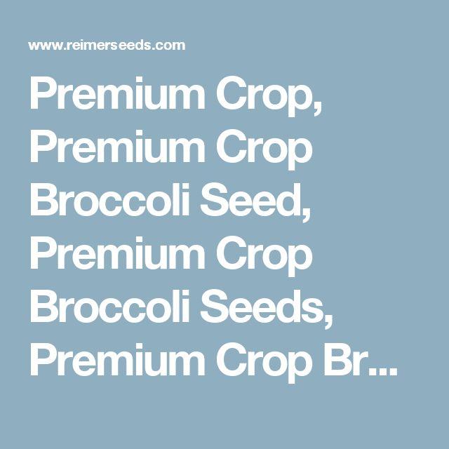 Premium Crop, Premium Crop Broccoli Seed, Premium Crop Broccoli Seeds, Premium Crop Broccoli, Brassica oleracea, All America Selections, AAS, Broccoli, Broccoli Seeds, G 26092 - Reimer Seeds, Vegetable Seeds, Flowers Seeds, Herb Seeds, Garden Seeds, Greenhouse Seeds