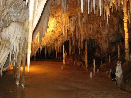 Great Hall at Hastings Caves, Tasmania