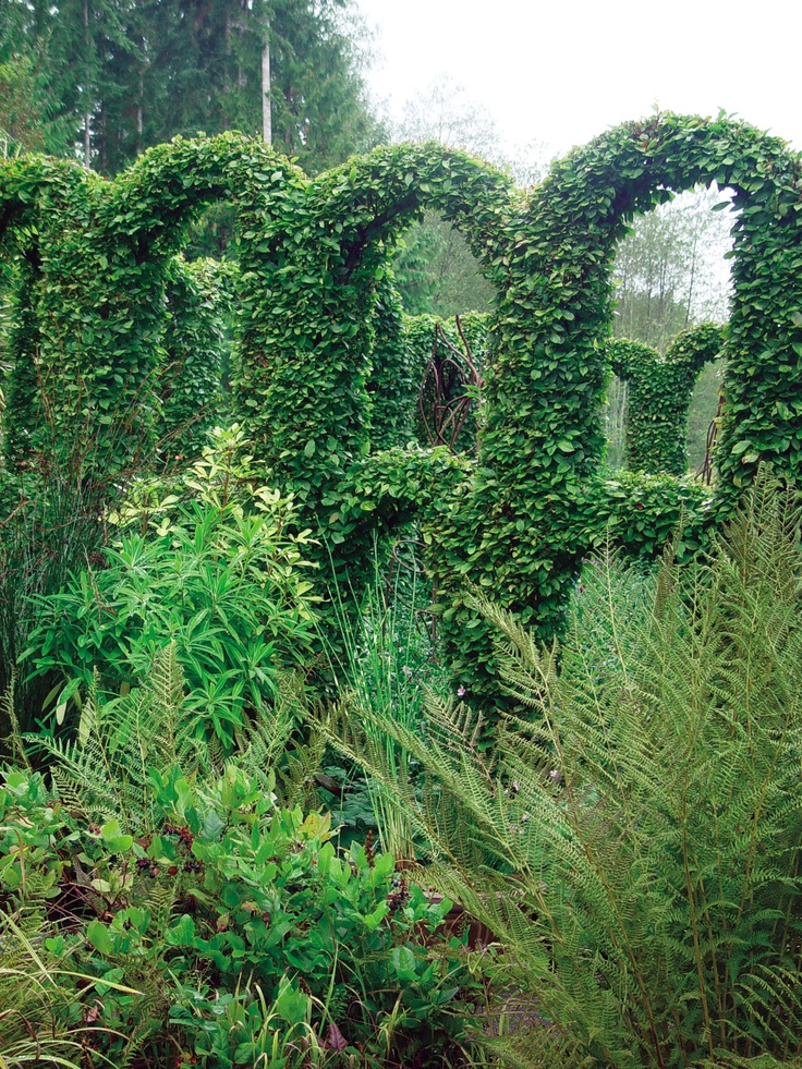17 best images about gardening espalier topiary on for Topiary garden designs
