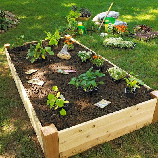 17 best images about gardening on pinterest raised beds for Making raised garden beds