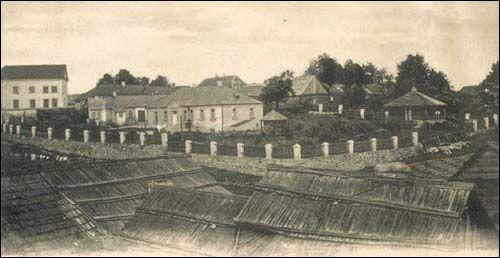 Siedziba Mickiewiczów na pocztówce z 1905 r (www.szukamypolski)