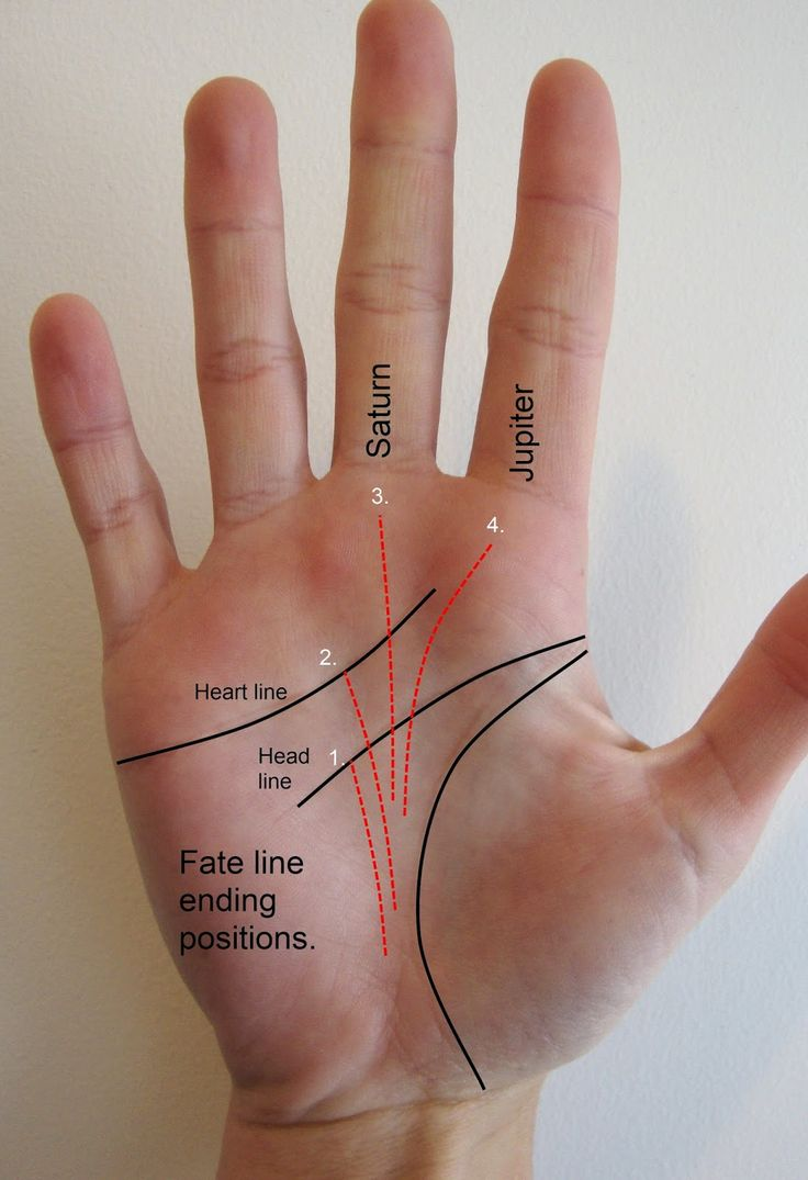 Palmistry Fate: Fate line and the meanings of its ...