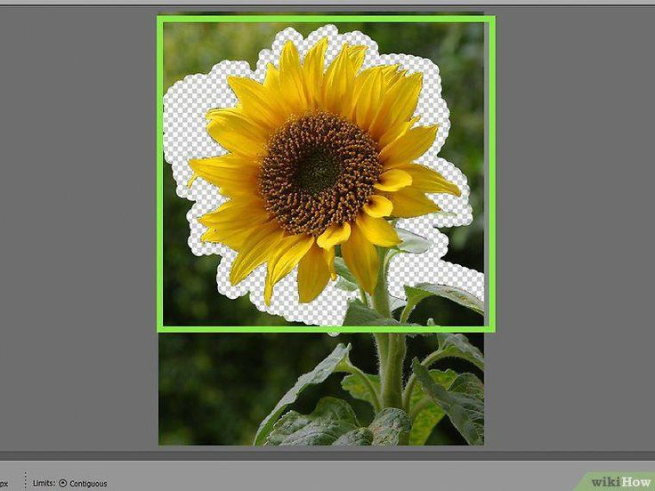 How to remove background with elements with