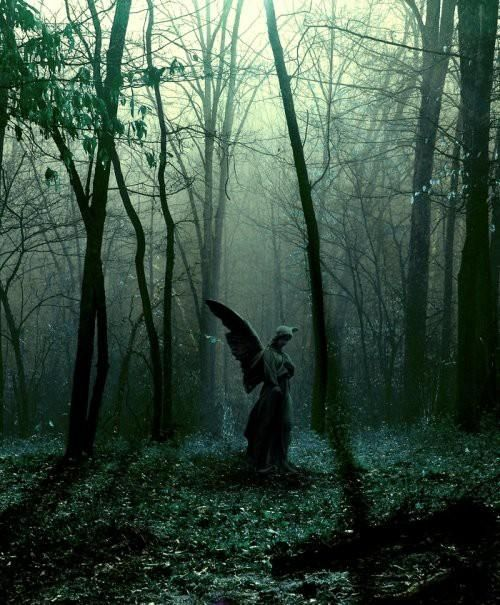 Hauntingly Beautiful Angel Statue in the Woods