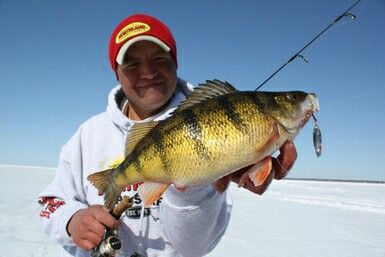 17 best images about ice fishing on pinterest lakes for Best fishing in minnesota
