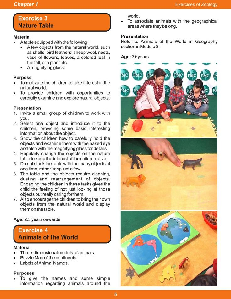 The 25+ best Montessori training online ideas on Pinterest - sample training manual