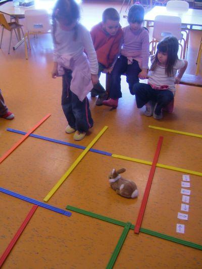 Ecole Edouard Vuagnat - Feigères - Les bébés - suite : Les différentes façons de se déplacer.