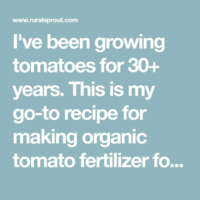 My Tomato Fertilizer Recipe Perfected Over 30 Years 400 x 300
